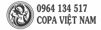 Thiết kế web DakLak – Chuẩn SEO, Chuyên Nghiệp – Công ty CoPa VN