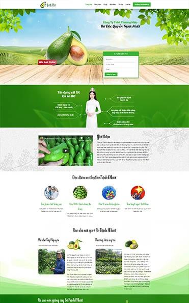 thiết kế web tại đăk lăk vua bơ trịnh mười